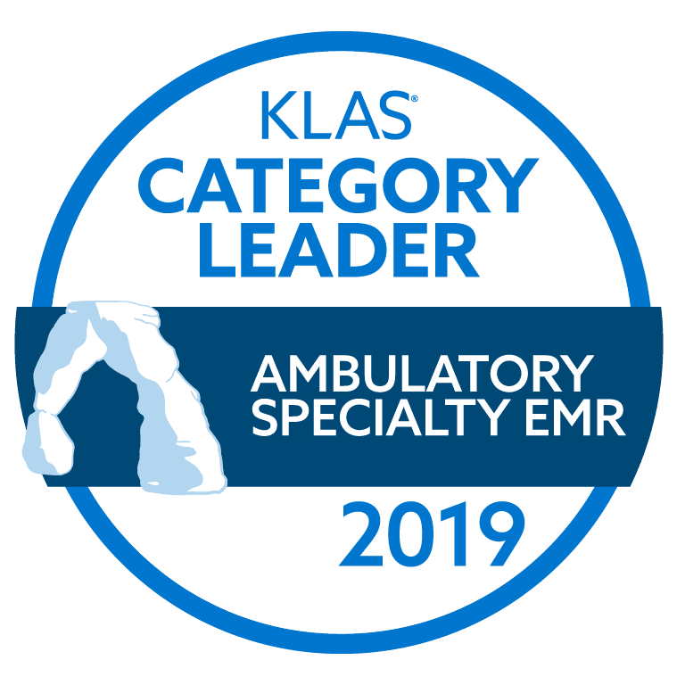 2019 KLAS Category Leader